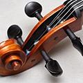 Cello-06.JPG