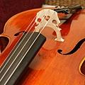 Cello-08.JPG