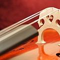 Cello-09.JPG