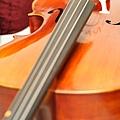 Cello-10.JPG