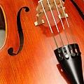 Cello-11.JPG