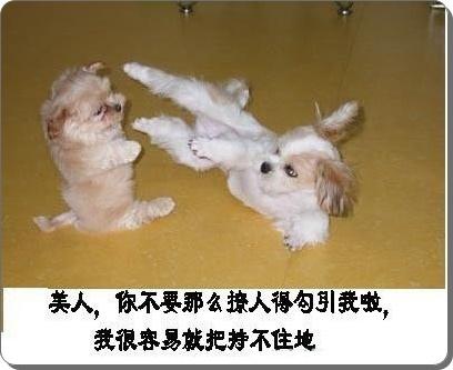 笑~2.jpg