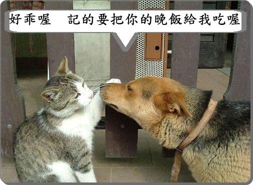 笑~9.jpg