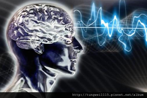 大腦潛能開發