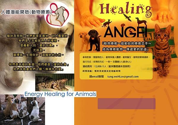 動物能量療癒 animals-Healing
