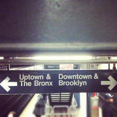 Bronx-.jpg