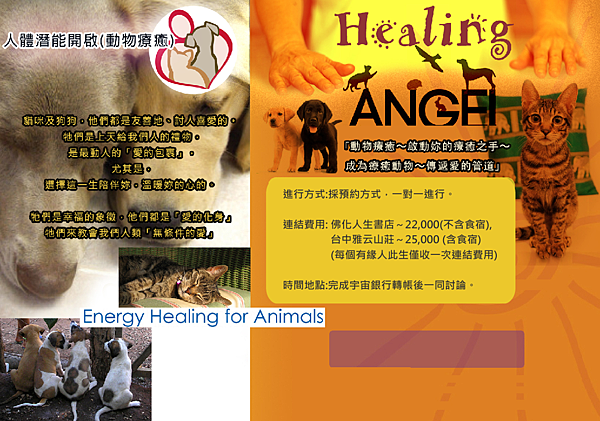 animals-healing.png