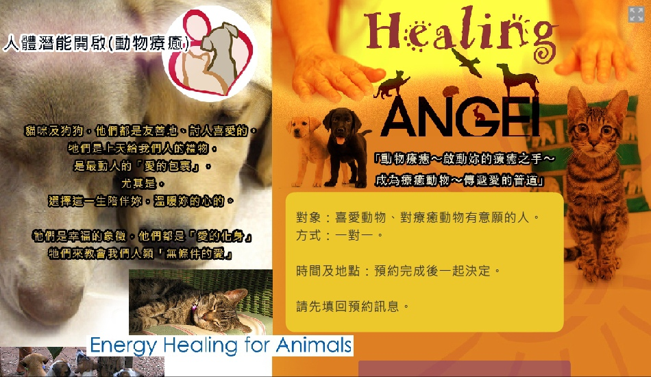 Animal-Healing_Worksop.jpg