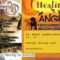 Animal-Healing_Worksop.jpg