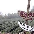 隙頂雲海拍攝失敗之遊(2012.10.08)