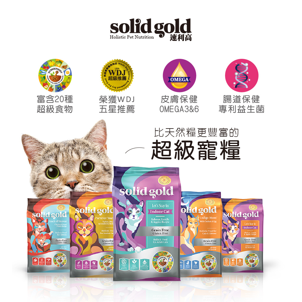 solidgold_banner工作區域 6-0919.jpg