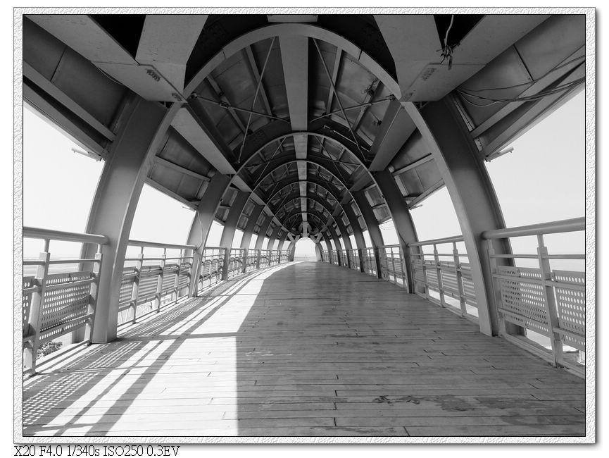 長得像某種昆蟲的天橋