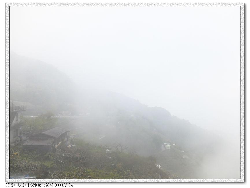 霧中的梨山,沒有小黃..