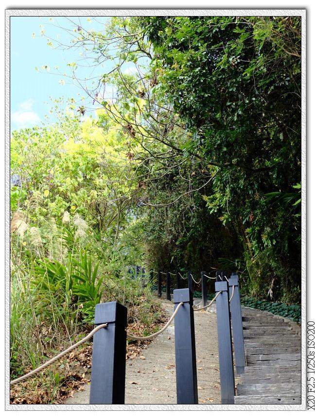 好漢坡步道,走右邊輕鬆很多,左邊下坡使用
