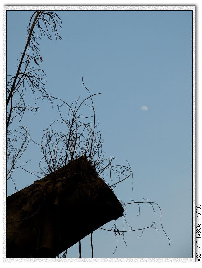 月亮出來了