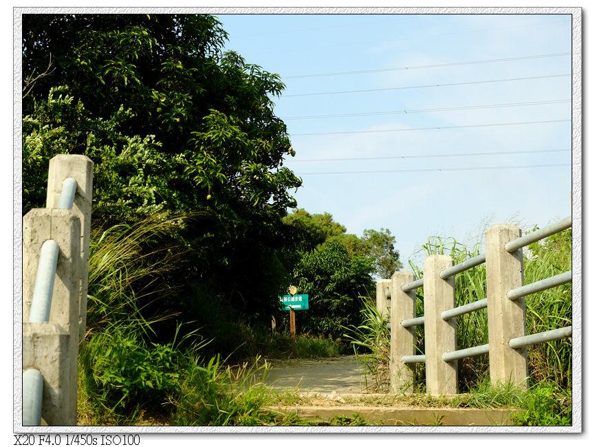 路過環保公園步道的出口