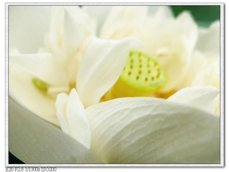 nEO_IMG_DSCF3483.jpg