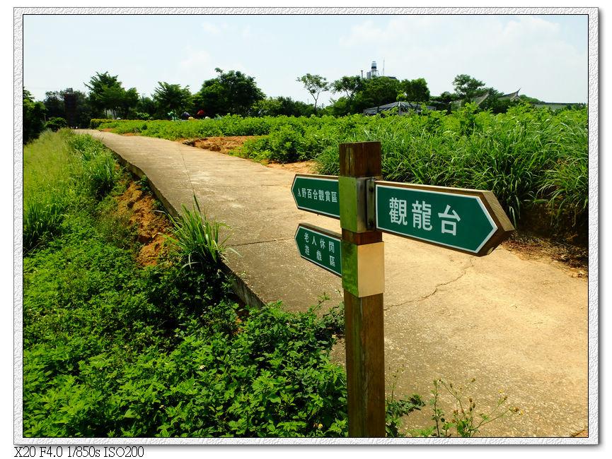 台灣百合復育區
