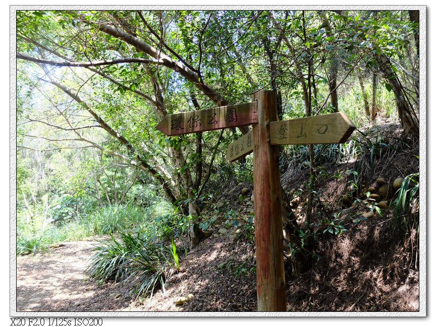 12:11 這個叉路口可以往環保公園另一端