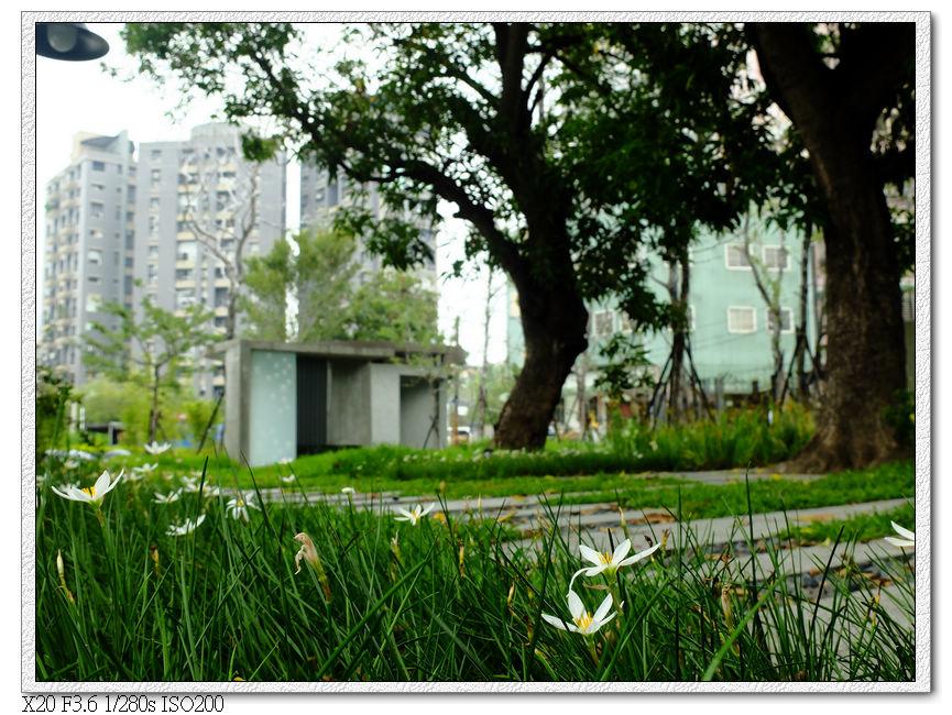 台中文學館草地
