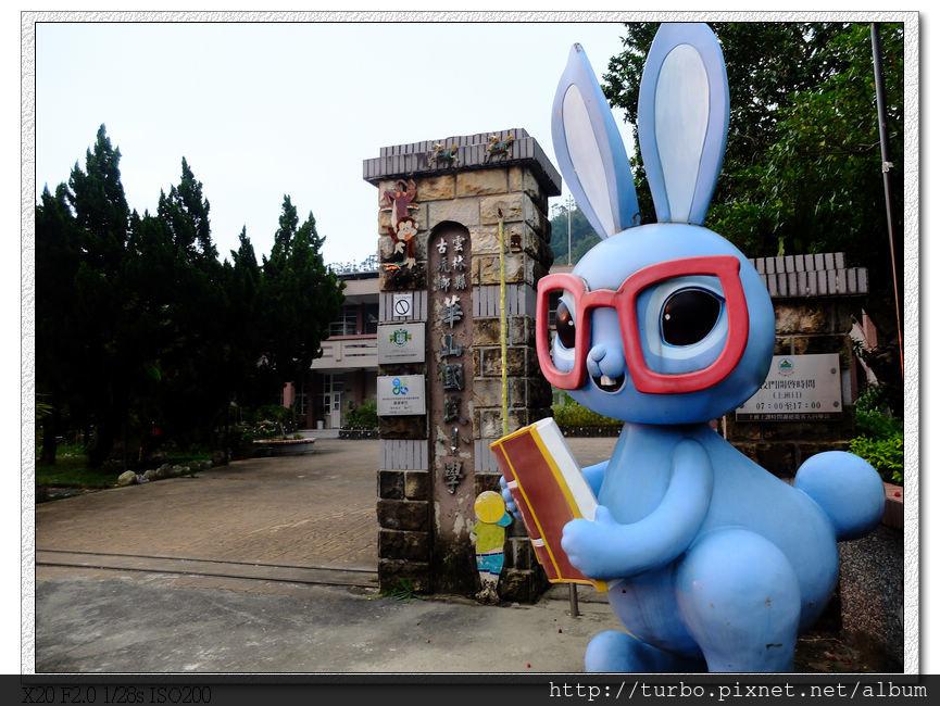 華山國小門口有兔子