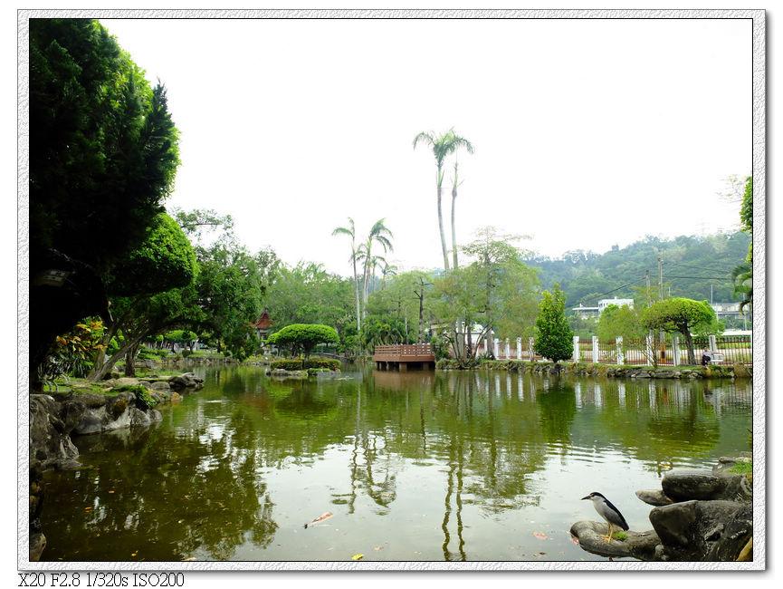 省議會水池