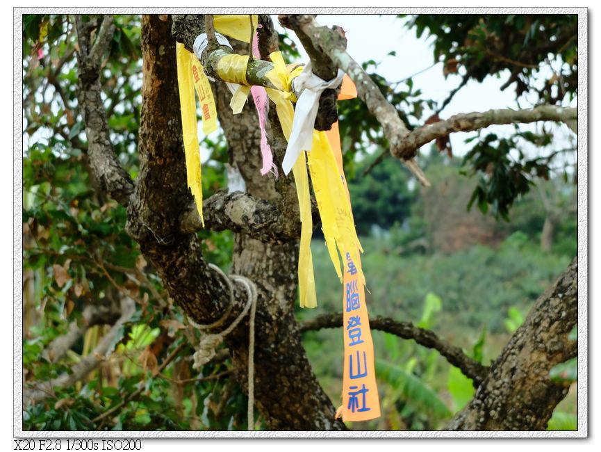 各登山社團掛的記號