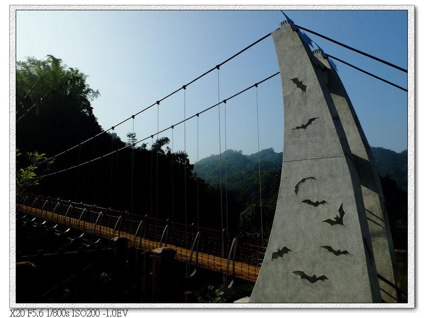 去蝙蝠橋看看