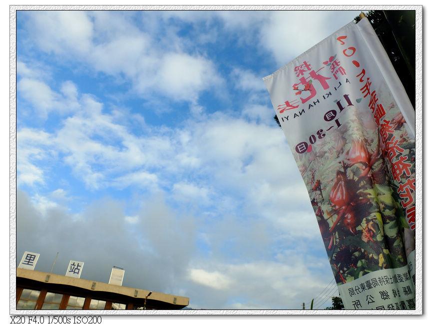 洛神花季宣傳旗