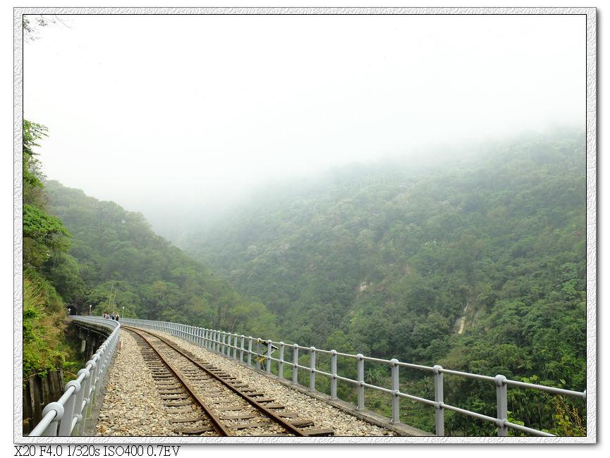 今天起霧了,看不到上方觀景台