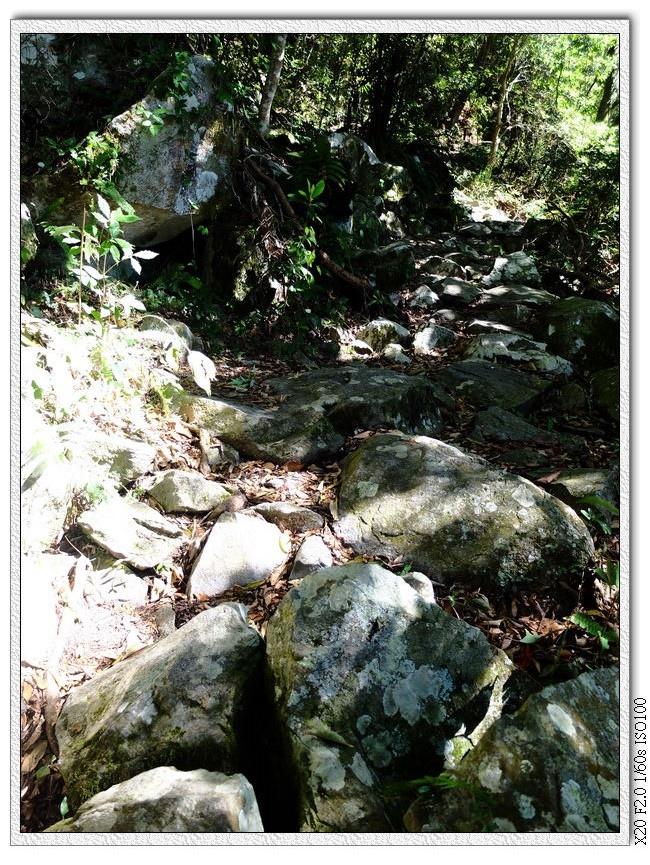 近5km出現平緩石頭路