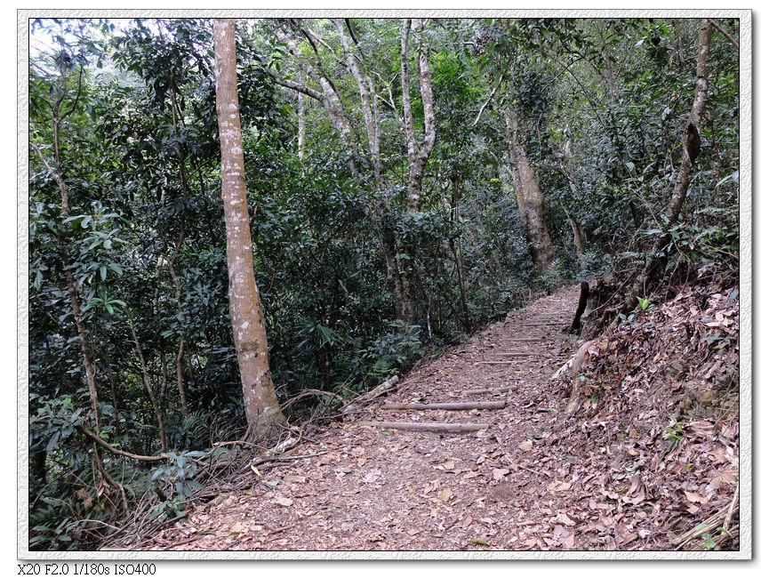 往瀑布方向走先是一小段木馬道