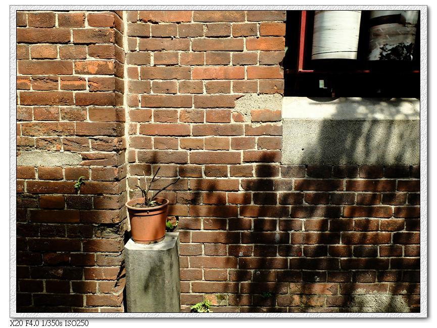 醉鄉酒家的殘牆跟老照片