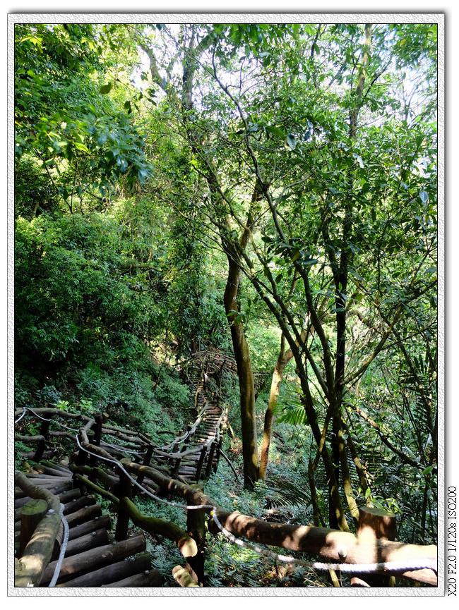 依然是木頭階梯