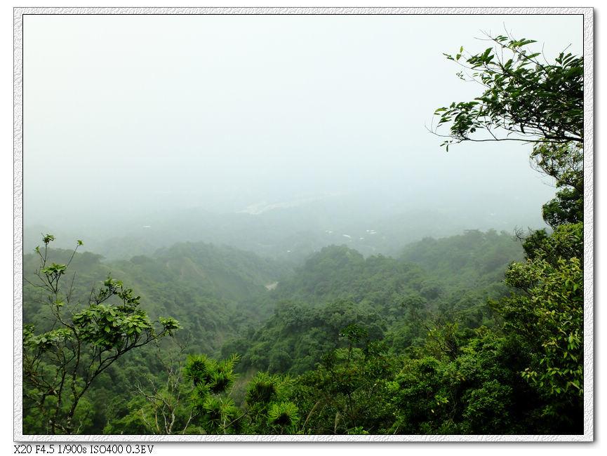 霧漸漸散開