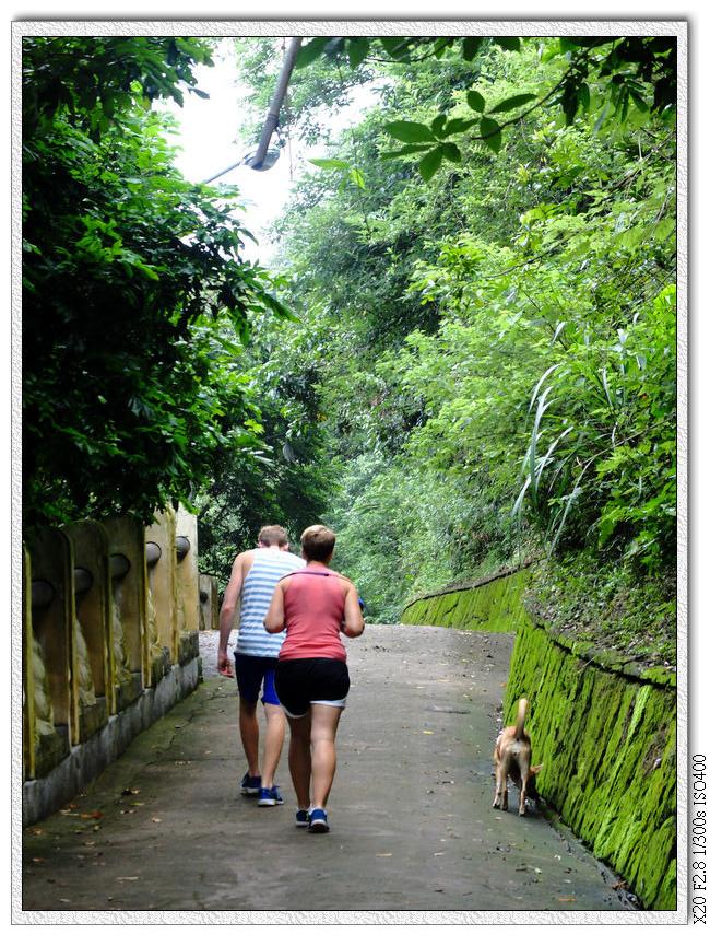 阿豆仔帶狗狗來散步