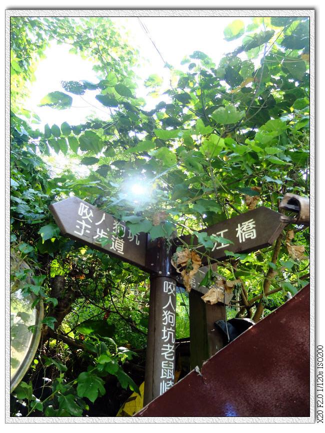 08:05 主步道跟第一步道叉路