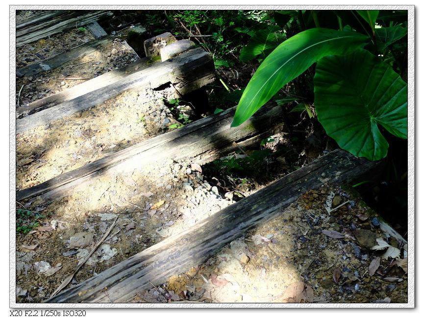 第二步道有些路面受損