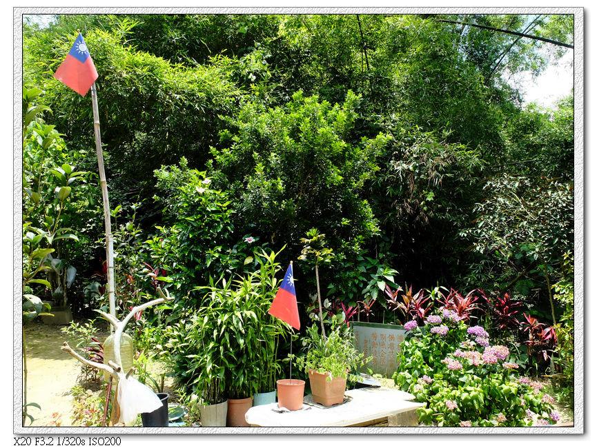 附近榮民伯伯整理的小花園