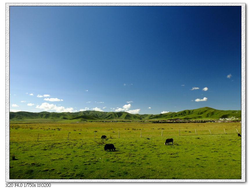 騎鐵馬去草原