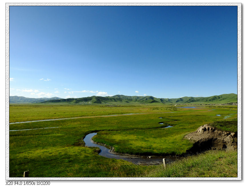 紅原大草原