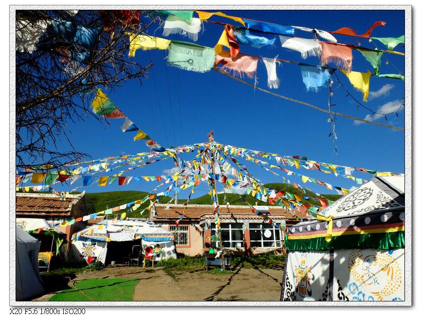俄果村有很多這樣的藏家樂,注意離黃河九曲第一灣還有4KM