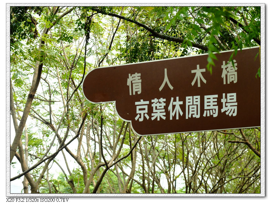 6km往情人木的轉彎處,要先騎上天橋