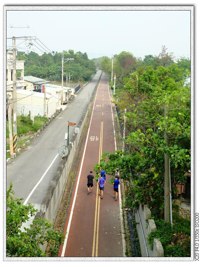情人木橋附近的車道