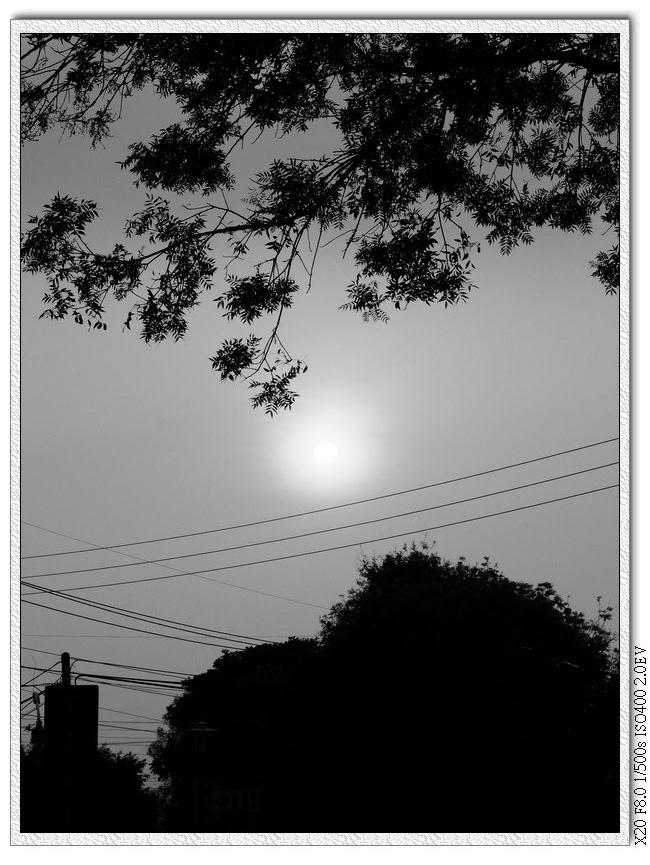 今天的太陽