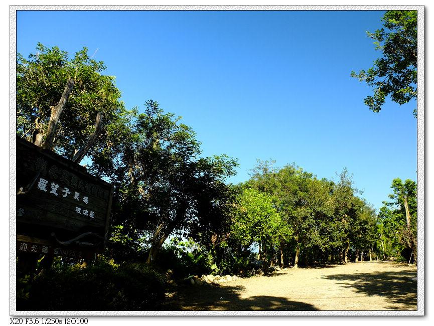 14:28 樹之王農場,進入下坡產業道路