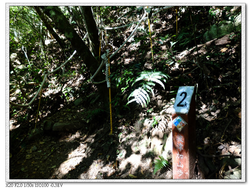 10:19 2km,後面開始碎石區,已經架設繩子圍籬