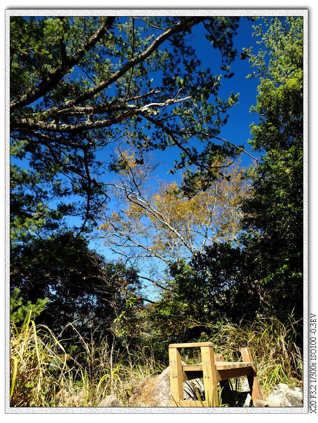 11:37 到觀景台,有椅子