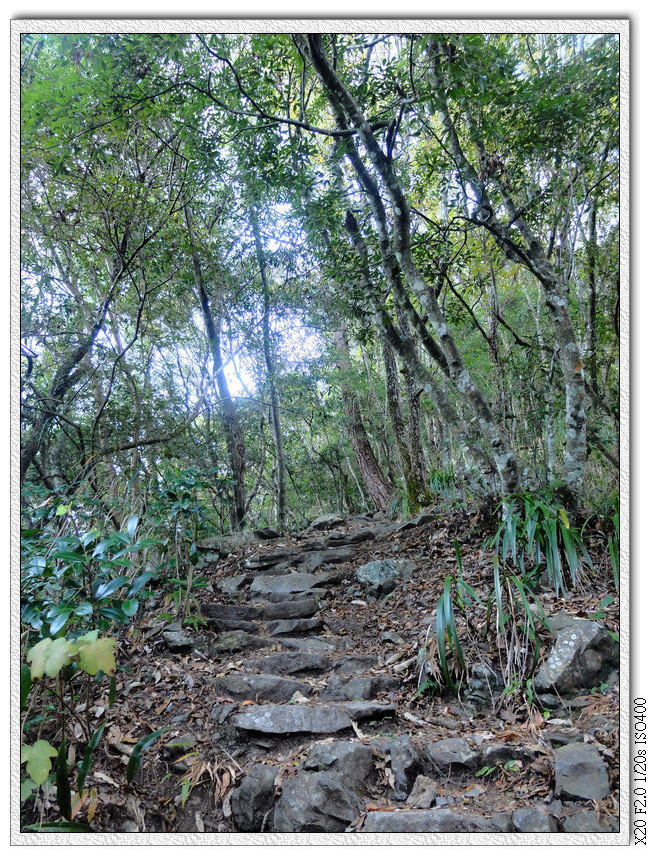 開始上坡石頭路