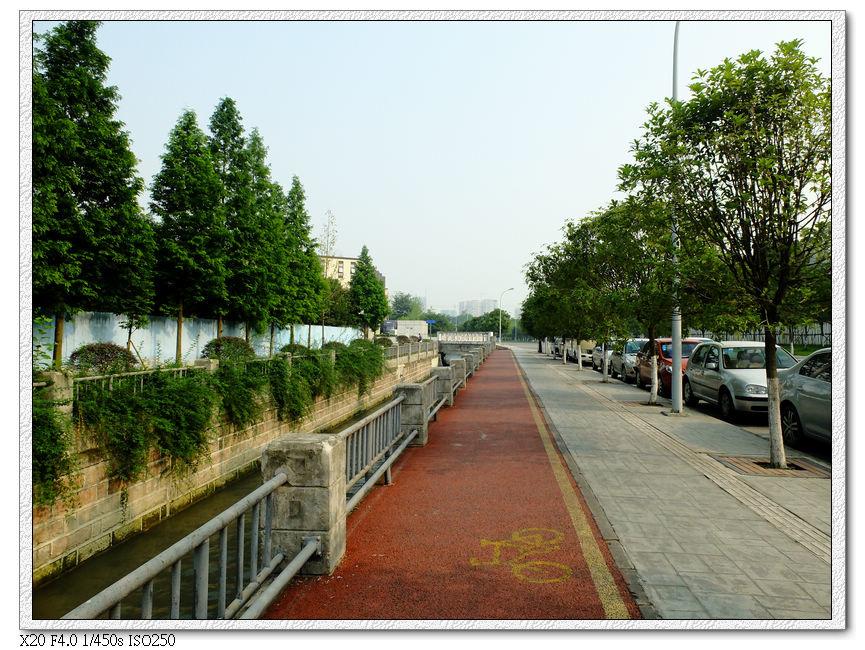 迎賓廣場旁的單車道